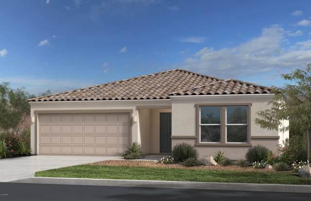 7777 S Agassiz Peak Court, Gold Canyon, AZ 85118 (MLS #5955697) :: The AZ Performance Realty Team