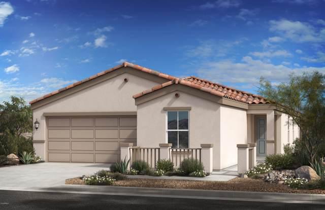 1514 E St Catherine Avenue, Phoenix, AZ 85042 (MLS #5955712) :: Riddle Realty