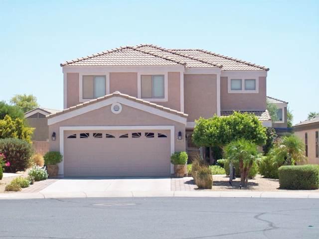 15219 N El Frio Court, El Mirage, AZ 85335 (MLS #5955728) :: Team Wilson Real Estate