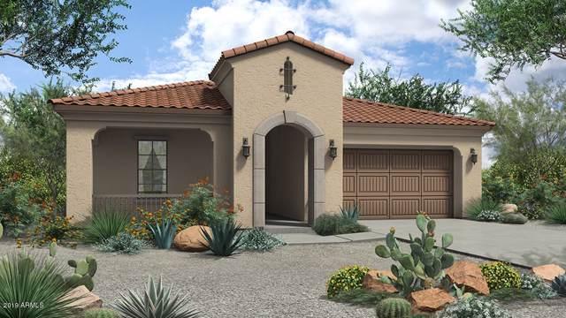 20488 W Delaney Drive, Buckeye, AZ 85396 (MLS #5955740) :: Brett Tanner Home Selling Team
