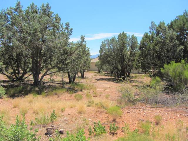 1601 W Piper Parkway, Payson, AZ 85541 (MLS #5955849) :: Riddle Realty