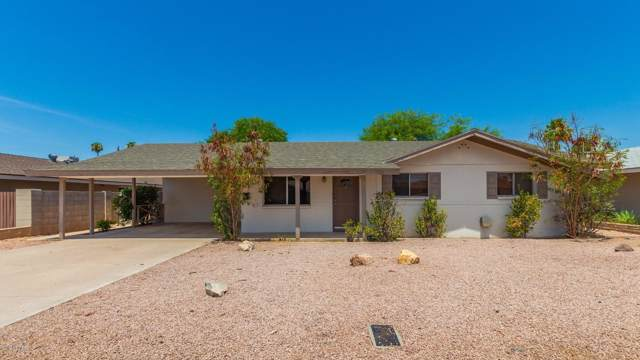 924 E Wesleyan Drive, Tempe, AZ 85282 (MLS #5956028) :: Yost Realty Group at RE/MAX Casa Grande