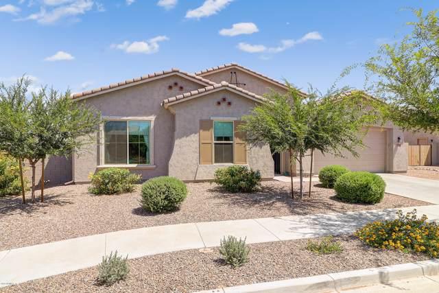 19334 E Ryan Road, Queen Creek, AZ 85142 (MLS #5957121) :: Revelation Real Estate