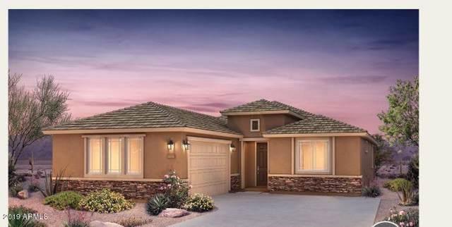 26088 W Lone Cactus Drive, Buckeye, AZ 85396 (MLS #5957138) :: The Property Partners at eXp Realty