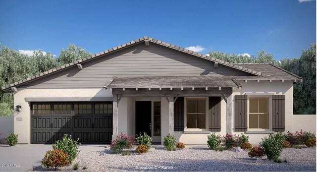 9369 W Daley Lane, Peoria, AZ 85383 (MLS #5957370) :: CC & Co. Real Estate Team