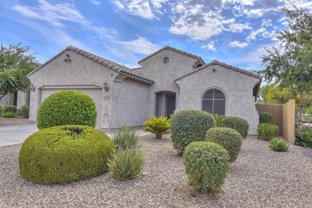 8907 N Dinino Court, Waddell, AZ 85355 (MLS #5958389) :: CC & Co. Real Estate Team