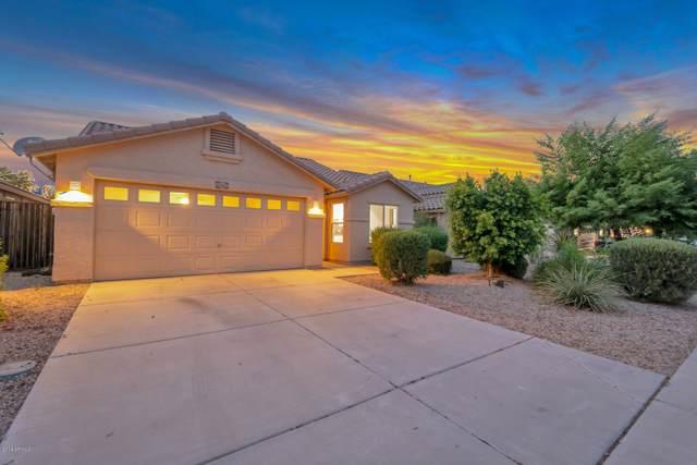 33602 N Roadrunner Lane, San Tan Valley, AZ 85142 (MLS #5958523) :: Revelation Real Estate