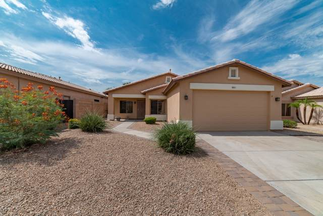 6613 W Range Mule Drive, Phoenix, AZ 85083 (MLS #5958729) :: Riddle Realty Group - Keller Williams Arizona Realty