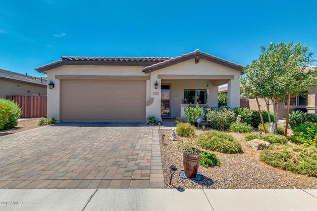 371 W Flame Tree Avenue, San Tan Valley, AZ 85140 (MLS #5958753) :: Revelation Real Estate