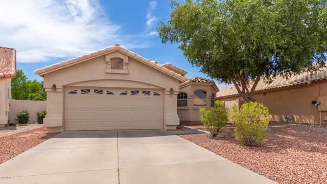 2704 N 126TH Drive, Avondale, AZ 85392 (MLS #5959351) :: Revelation Real Estate