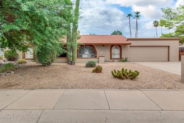 317 E Carol Ann Way, Phoenix, AZ 85022 (MLS #5959373) :: Phoenix Property Group