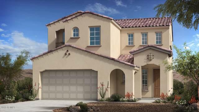 3289 E Los Gatos Drive, Phoenix, AZ 85050 (MLS #5959564) :: CC & Co. Real Estate Team