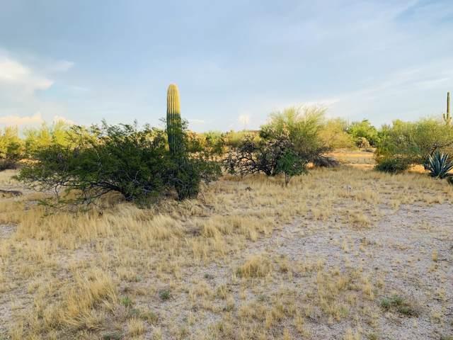 3502 N Razorback Drive, Florence, AZ 85132 (MLS #5959758) :: Brett Tanner Home Selling Team