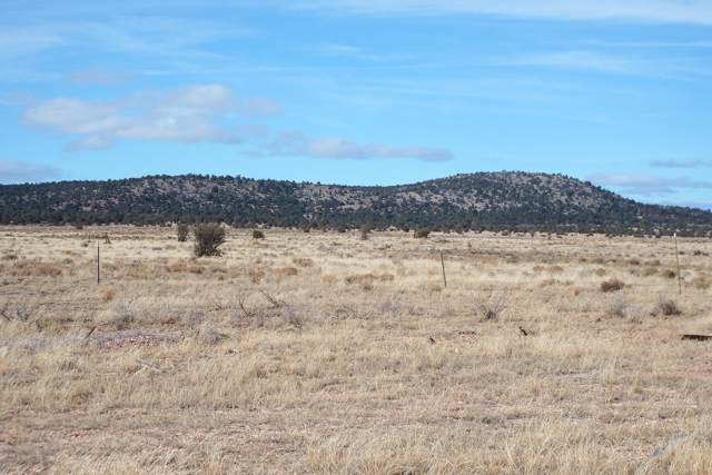 Lot 28 Route 66, Seligman, AZ 86337 (MLS #5960036) :: Midland Real Estate Alliance