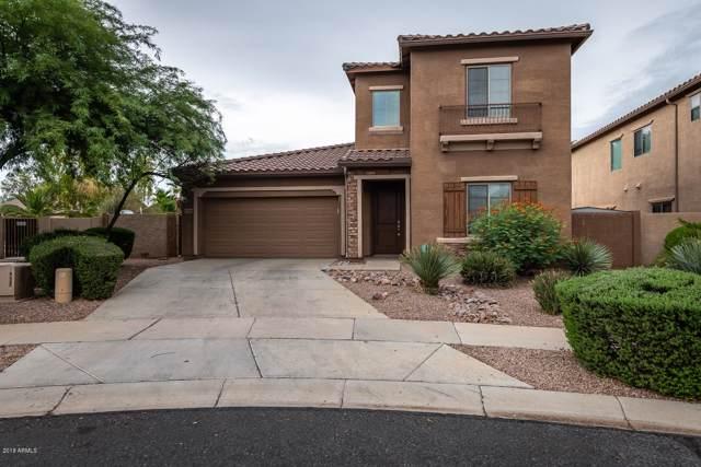 16284 W Desert Mirage Drive, Surprise, AZ 85379 (MLS #5960169) :: The Garcia Group