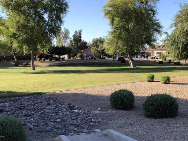 8214 W Lumbee Street, Phoenix, AZ 85043 (MLS #5960292) :: Lux Home Group at  Keller Williams Realty Phoenix