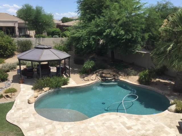 4914 E Daley Lane, Phoenix, AZ 85054 (MLS #5960348) :: The Property Partners at eXp Realty