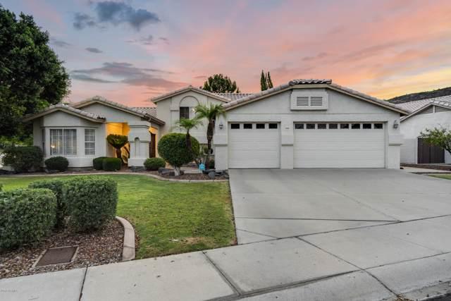 21606 N 55TH Drive, Glendale, AZ 85308 (MLS #5960610) :: Nate Martinez Team