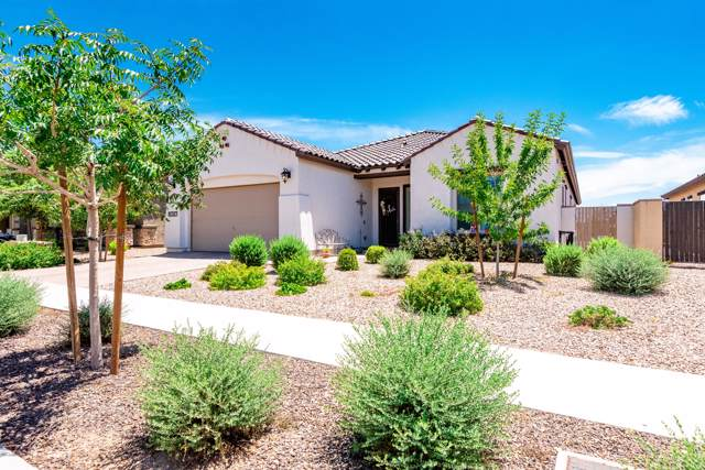 14387 W Windrose Drive, Surprise, AZ 85379 (MLS #5960815) :: The Garcia Group