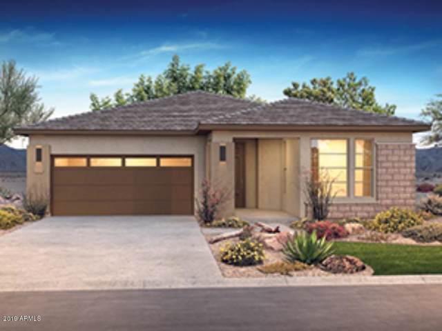 13373 W Blackstone Lane, Peoria, AZ 85383 (MLS #5960840) :: Conway Real Estate