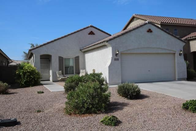 42787 W Raynon Street, Maricopa, AZ 85138 (MLS #5961065) :: CC & Co. Real Estate Team
