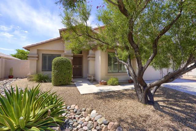 5267 W Kaler Circle, Glendale, AZ 85301 (MLS #5961307) :: CC & Co. Real Estate Team