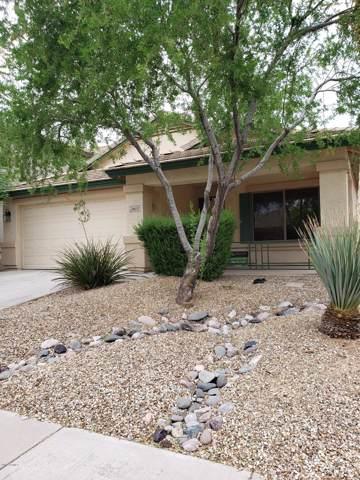 28613 N 21ST Lane N, Phoenix, AZ 85085 (MLS #5961380) :: Team Wilson Real Estate