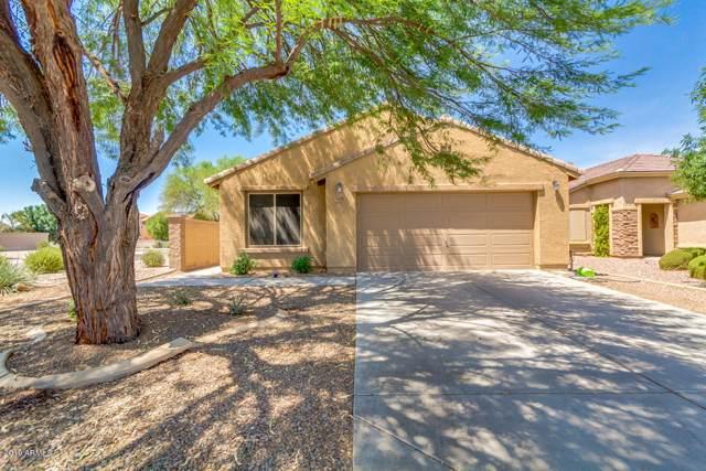 928 W Desert Sky Drive, San Tan Valley, AZ 85143 (MLS #5961494) :: CC & Co. Real Estate Team