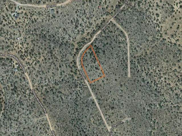 57643 N Charro Road, Seligman, AZ 86337 (MLS #5961505) :: Long Realty West Valley