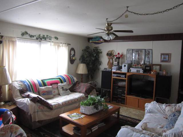 224 E Cottonwood Street, Roosevelt, AZ 85545 (MLS #5961565) :: The Kenny Klaus Team