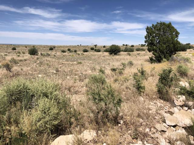 5095 W Mile High Drive, Williams, AZ 86046 (MLS #5961568) :: Yost Realty Group at RE/MAX Casa Grande