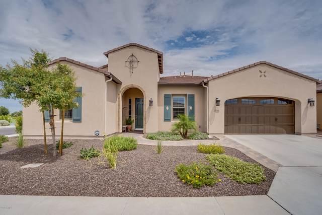 706 E La Palta Street, San Tan Valley, AZ 85140 (MLS #5961668) :: Conway Real Estate