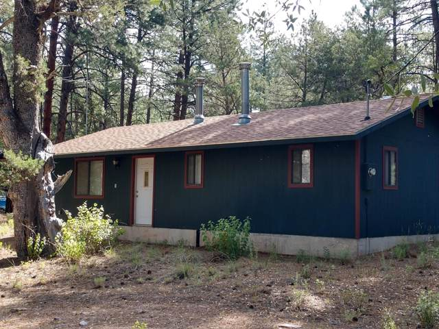 247 S Freds Road, Young, AZ 85554 (MLS #5961684) :: Lucido Agency
