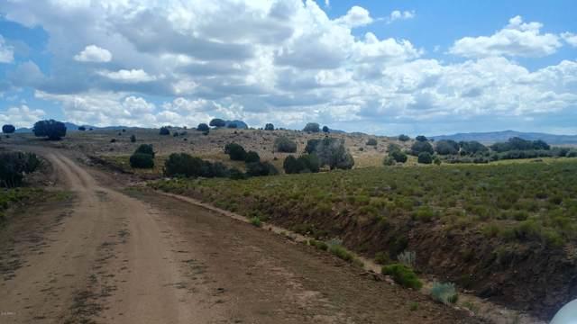Lot 152 Wagon Bow Trail, Wikieup, AZ 85360 (MLS #5961710) :: Revelation Real Estate