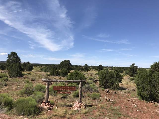 3747 S Desert View Trail, Williams, AZ 86046 (MLS #5961714) :: The W Group