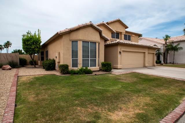 6241 W Monona Drive, Glendale, AZ 85308 (MLS #5961862) :: Conway Real Estate