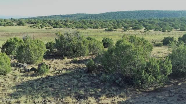 163 8235 County Road, Vernon, AZ 85940 (MLS #5961871) :: Brett Tanner Home Selling Team