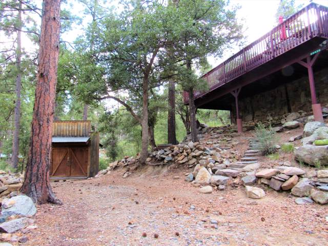23436 S Sunny South Road, Crown King, AZ 86343 (MLS #5961932) :: Conway Real Estate