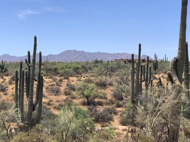 0 N 176th Street, Rio Verde, AZ 85263 (MLS #5962095) :: RE/MAX Desert Showcase