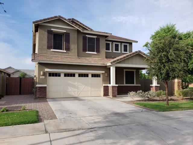 7337 E Onza Avenue, Mesa, AZ 85212 (MLS #5962209) :: Team Wilson Real Estate