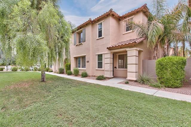 3525 S Seneca Way, Gilbert, AZ 85297 (MLS #5962284) :: Yost Realty Group at RE/MAX Casa Grande