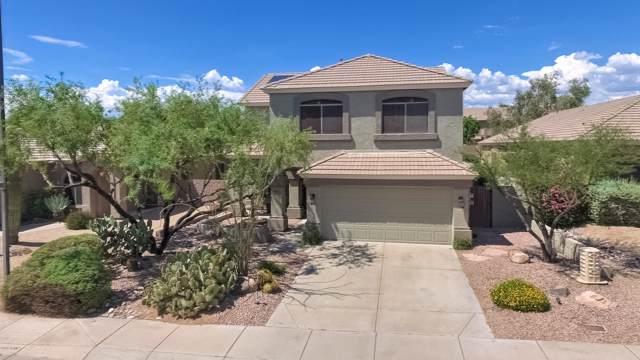 4702 E Prickly Pear Trail, Phoenix, AZ 85050 (MLS #5962326) :: CC & Co. Real Estate Team