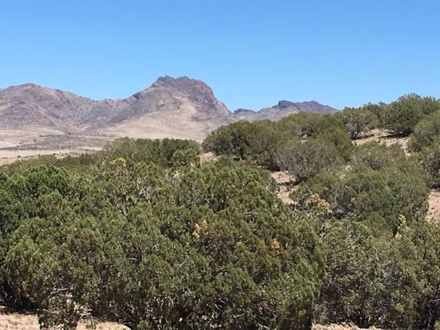 Lot 231 Bacanora Trail, Wikieup, AZ 85360 (MLS #5962402) :: Revelation Real Estate