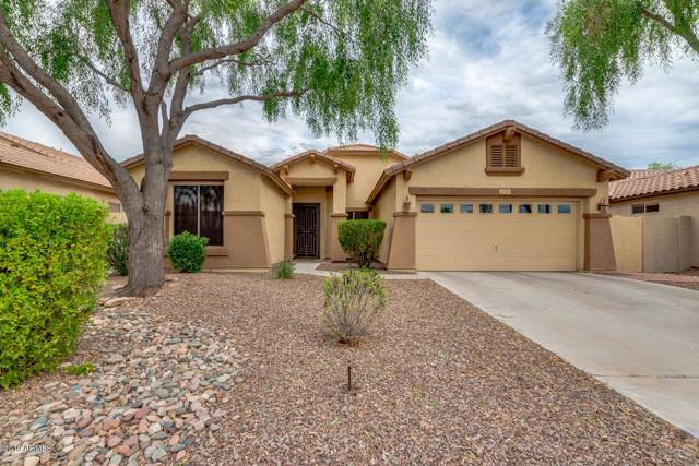 3770 S Ashley Place, Chandler, AZ 85286 (MLS #5962429) :: Riddle Realty Group - Keller Williams Arizona Realty