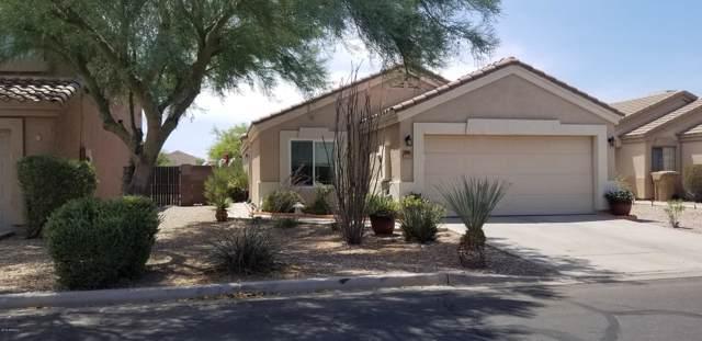 23594 N High Dunes Drive, Florence, AZ 85132 (MLS #5962443) :: Revelation Real Estate