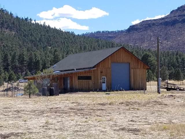 109 Co Rd 2130, Nutrioso, AZ 85932 (MLS #5962498) :: Revelation Real Estate
