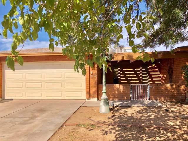 4404 W Cathy Circle, Glendale, AZ 85308 (MLS #5962579) :: CC & Co. Real Estate Team