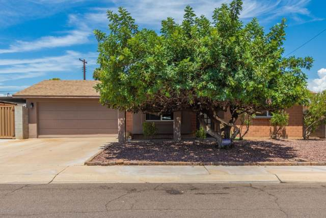 8432 E Lewis Avenue, Scottsdale, AZ 85257 (MLS #5962602) :: Conway Real Estate