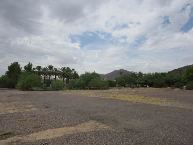 ---- E Meadowlark Lane, Paradise Valley, AZ 85253 (MLS #5962637) :: The Kenny Klaus Team