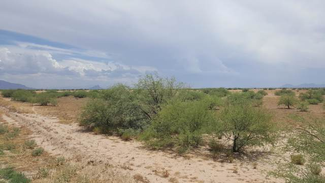 0 W Phillips Road, Eloy, AZ 85131 (MLS #5962798) :: Brett Tanner Home Selling Team